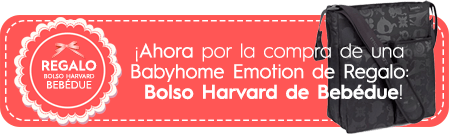 Emotion regalo bolso harvard